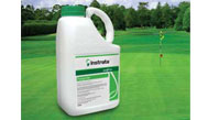 Multi-action fungicide to tackle changeable conditions